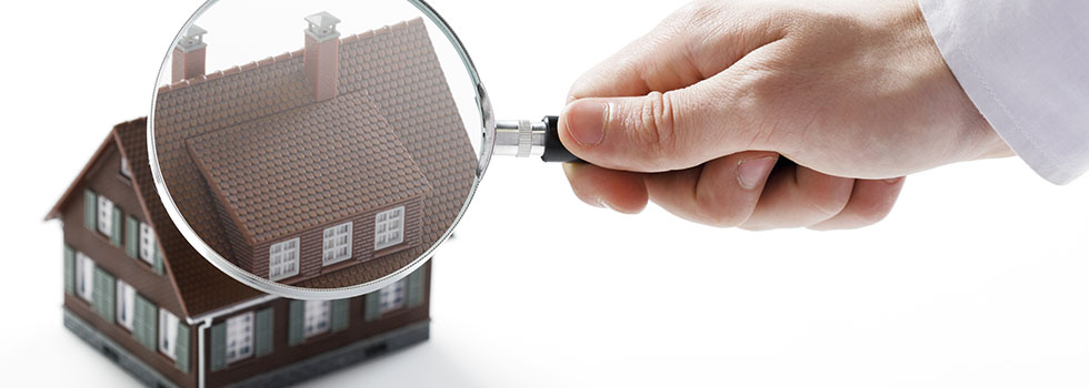property inspection service